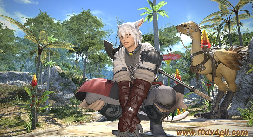 Final Fantasy XIV will be maintained on May 15 to May 17