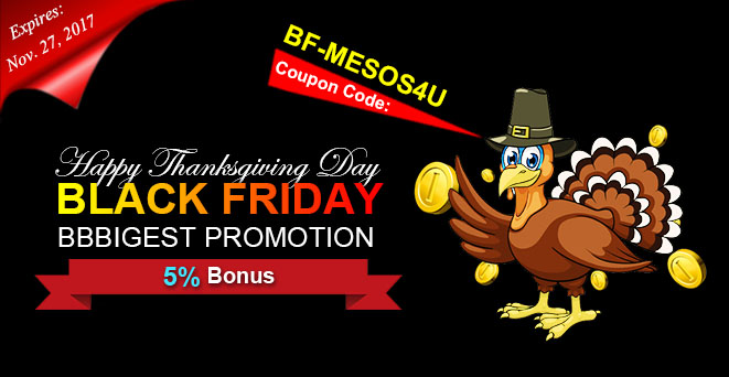 Big Promotion for Thanksgiving and Black Friday