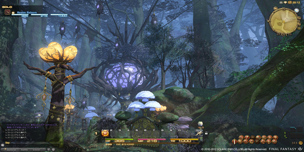 Final Fantasy XIV Was Widespread Acclaimed MMORPG Gameplay