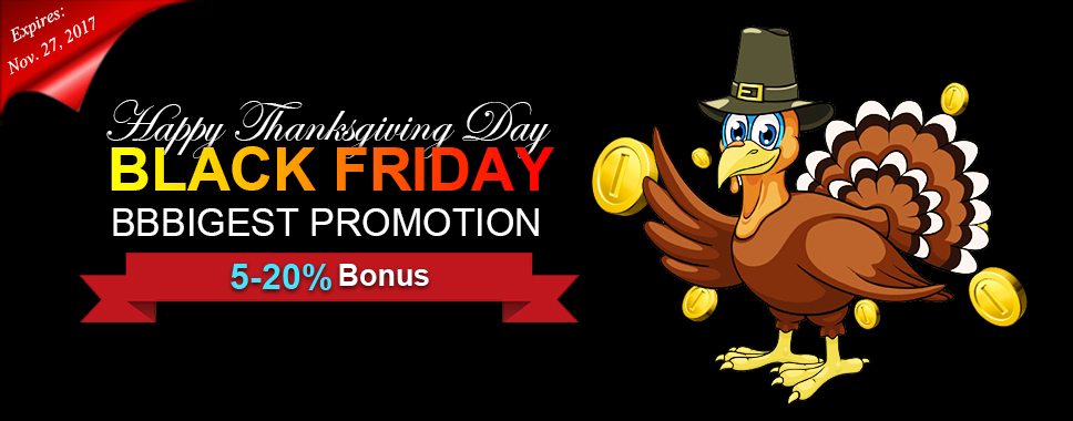 Thanksgiving and Black Friday Big Promotion!