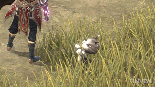 Grow A Pet To Accompany You In MU Legend